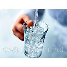 CWG Ukraine Консультация по выбору питьевого фильтра воды